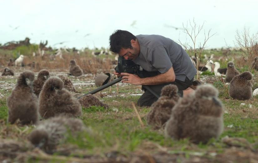 International Bird Rescue – Every Bird Matters» Blog ...