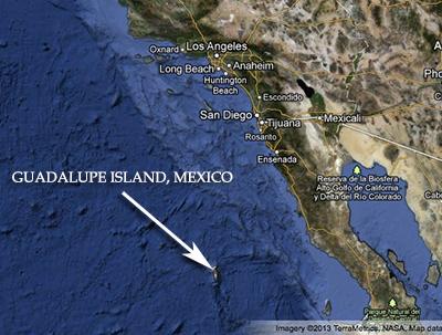 Guadalupemap