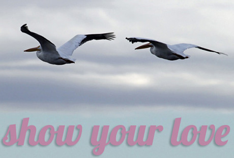 Show-Your-Love-460px