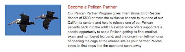 Pelican Partners