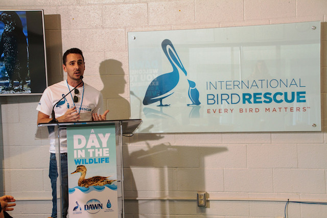 Andrew Harmon talks about International Bird Rescue's mission