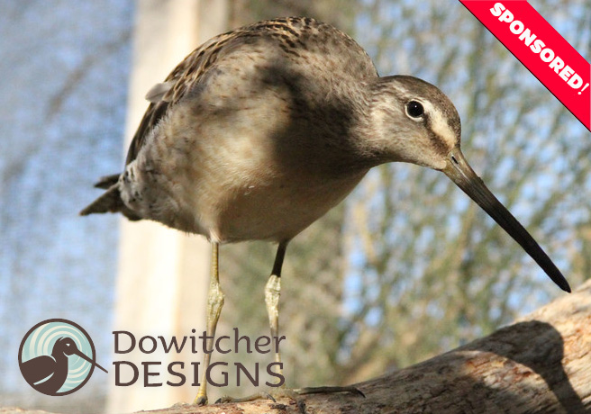 Dowitcher-Designs-Sponsorship