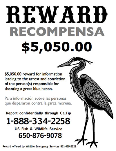 heron reward sign
