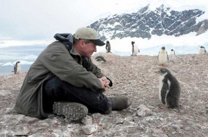 Joel-Sartore-Penguin