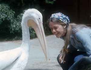 Photo of Alice Berkner with a White Pelican, International Bird Rescue founder