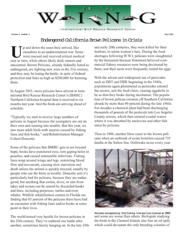 Download Fall 2001 PDF newsletter from International Bird Rescue