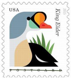 King-Eider-2015-stamp